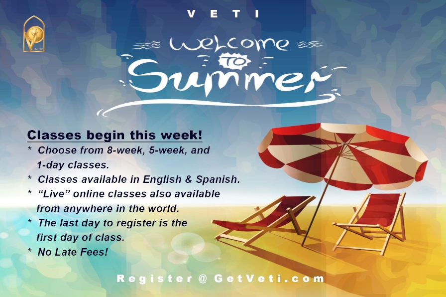 VETI Summer Welcome